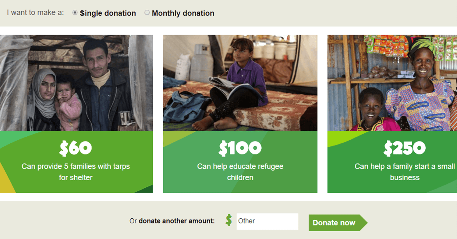 successful nonprofit's donation page for social good